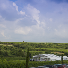 Weingut Gehring Eventlocation